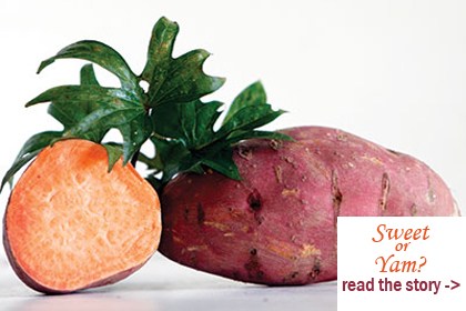 What is the difference between a sweet potato and yam  - Read the story